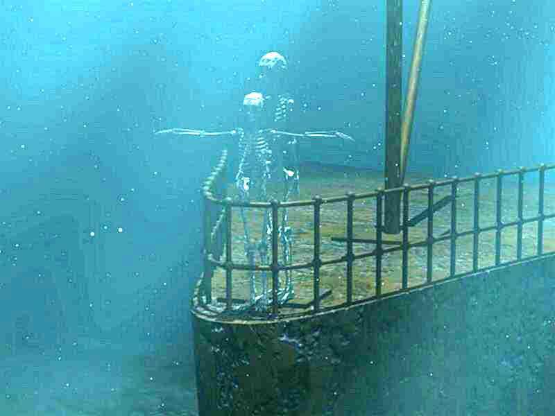 http://www.capriogroup.com/WebStuff/Images/MiscPictures/TitanicSkeletonBowShot.jpg